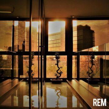 REM-2